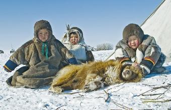 Владимир Плотницкий. Дети тундры