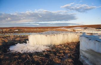 Владимир Плотницкий. Река Воркута. Донный лед