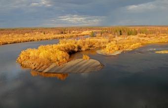 Автор Владимир Данько. Урочище Пальникщелья