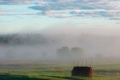 Автор Евгений Рожкин. В тумане