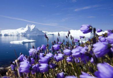 III Международный  туристский форум  «Доступная Арктика»