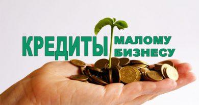Региональные институты кредитно-гарантийной поддержки получат дополнительное финансирование из федерального бюджета