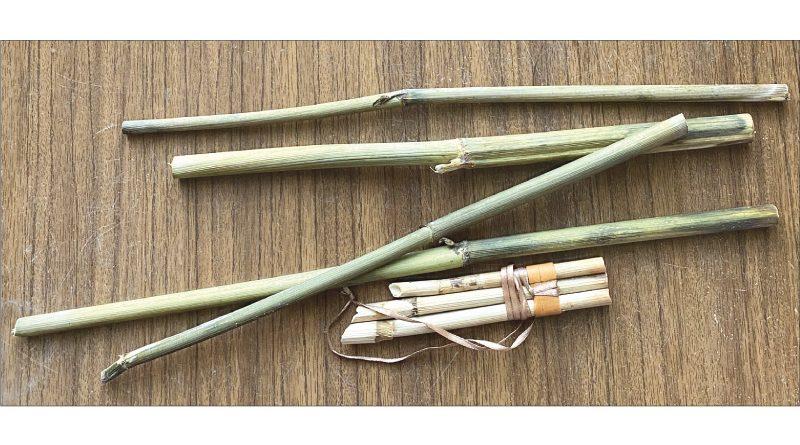 Чипсан. Коми флейта